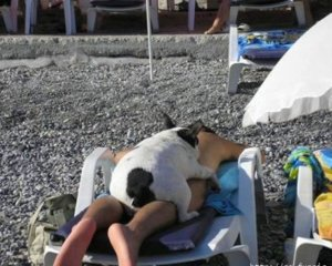 the-best-end-of-summer-fails-and-flops-13