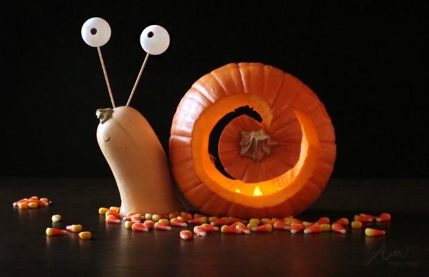 1438805638-54ffe537af882-snail-pumpkin-de