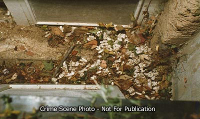 jon_benet_autopsy_crime_scene_018.jpg